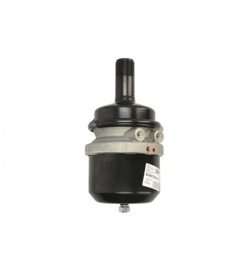 Энергоакамулятор 20/24 IVECO 8169241